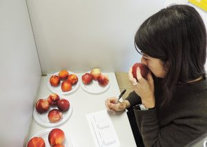 test aromatico frutta