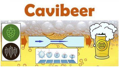 Illustrazione Processo CAVIBEER