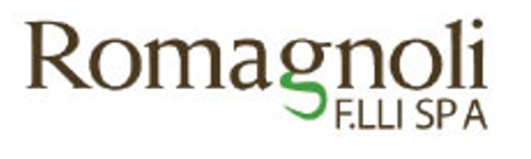 Logo Romagnoli F.LLI SPA