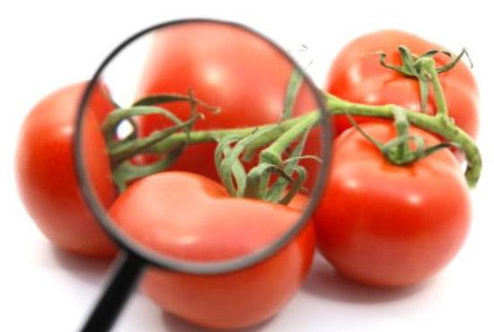 tracciabilità alimentare